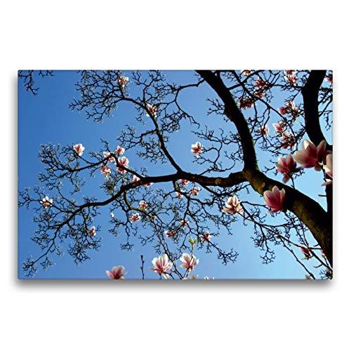 Calvendo Premium Textil-Leinwand 75 cm x 50 cm quer, Schöner Himmel | Wandbild, Bild auf Keilrahmen, Fertigbild auf echter Leinwand, Leinwanddruck: Blühende strahlend blauem Himmel Glaube Glaube -