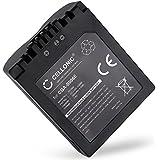 CGA-S006E Batterie pour Panasonic
