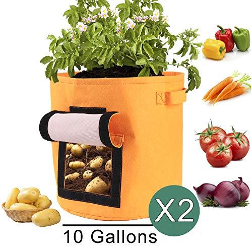 Kartoffel Pflanzsack, 2er-Pack Kartoffel Grow Bag, 10-Gallonen Pflanzbeutel aus Vliesstoff mit Tragegriffen für Kartoffel/Karotte und mehr (Orange)