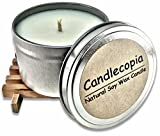 Candlecopia Scented Candles Review and Comparison