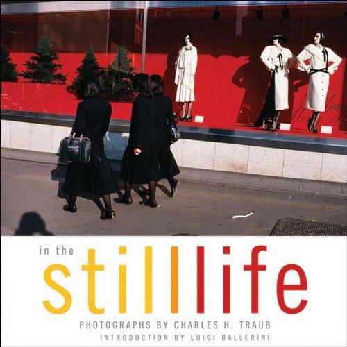 In The Still Life