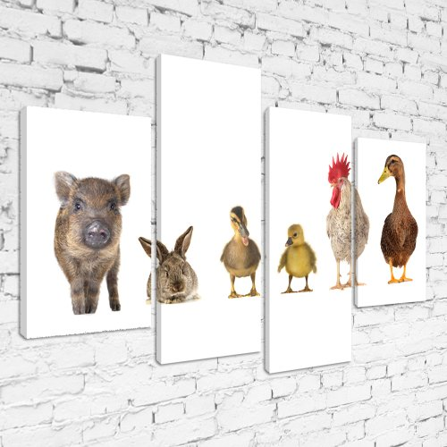MPA171 Farm Animals Lined Up on White Background Framed Ready To Hang Multi  Panel Canvas Print 612508cfc3f5