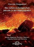 Die sieben archetypischen Metalle in der Homöopathie (Amazon.de)