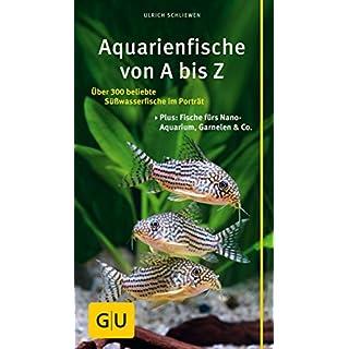 Kompass: Aquarienfische gelb 12 x 3,5 cm (GU Der große Kompass)