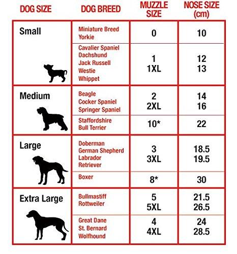 mikki museli re de dressage pour chien taille 3 xl. Black Bedroom Furniture Sets. Home Design Ideas