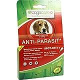 BOGACARE ANTI-PARASIT Spot-on Hund klein 6 ml Flüssigkeit