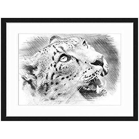 Matita Schizzo del Leopardo–stampa artistica da parete cornice in legno massiccio (Bianco e nero 50,8x 35,6cm)