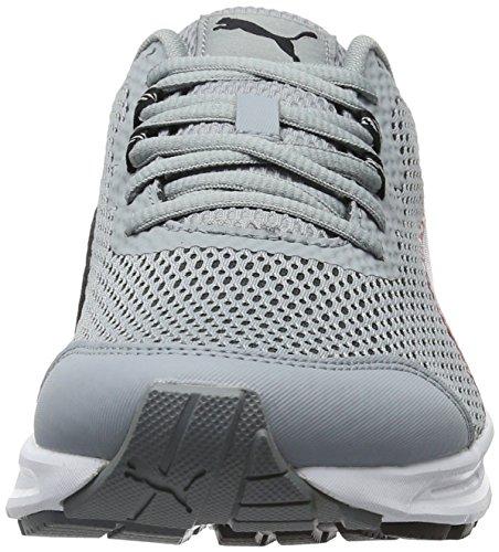 Puma Descendant V4, Chaussures de Running Compétition Homme Gris (Quarry-puma Black-high Risk Red 07)