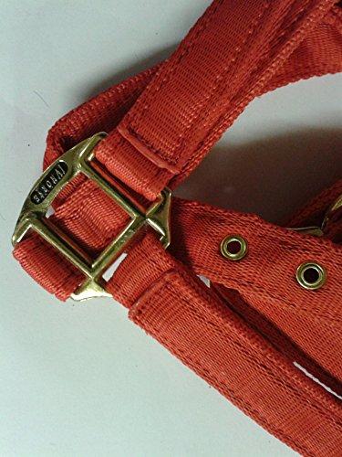 51TltwlZ8YL BEST BUY #1Premium Soft Web Headcollar by IV Horse (Extra Full, Red)