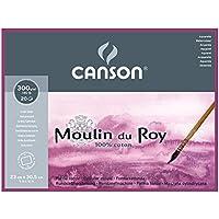 Canson Moulin du Roy - Bloc papel de acuarela, 23 x 30.5 cm, color blanco natural