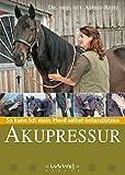 Akupressur - So kann ich mein Pferd selbst unterstützen