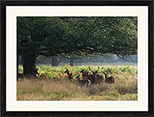 Select Frames Black Collection - HandMade Wooden Picture Or Photo Frames With A Mount *Pick Your Size*