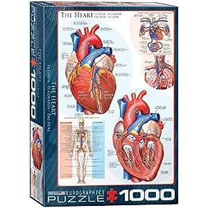 Puzzle 1000 Piezas - El corazón Humano - 00257 de Euro Gráficos