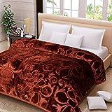 Webelkart Super Soft Microfibre Winter Heavy 2.50 KG Quilt (Razai)/ Mink Blanket with Free Carry Bag- Double Bed (Brown)