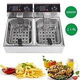 Friggitrice Professionale Per Cucinare In Casa,Controllo di temperatura, Ciotola d'olio removibile,in acciaio inossidabile (12L)