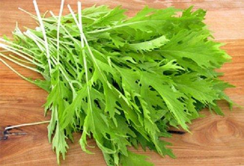 1000 Vert de chou Moutarde japonais Greens Moutarde Brune à herbes Légumes Graines