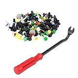 Qiilu QL04754 500pcs Assortiti Plastica Portiera Auto Trim Clip di Fissaggio Fermo Rivetto Push Pin Set w / Cacciavite
