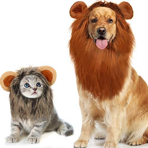 Kostüm Katze Realistische - WILLBOND 2 Stücke Löwe Mähne Perücke mit Ohr Verstellbar Realistische Löwe Mähne Kostüm Groß für Halloween Weihnachten Party (Hund und Katze)