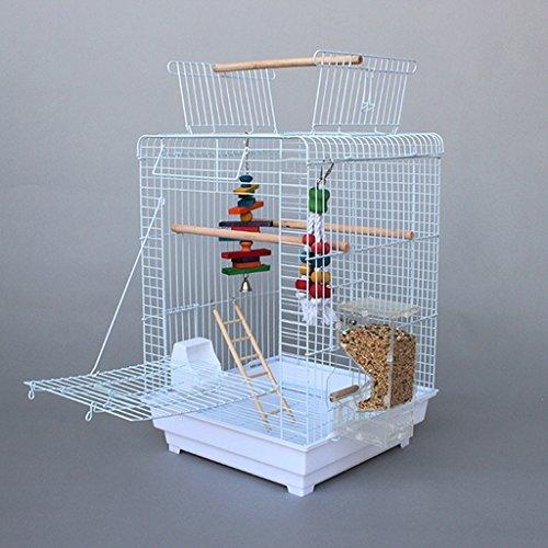 Liuyu · Lebenshaus Eisenkunst Vogelkäfig Offener Stil Großer Papagei Luxus ( Farbe : Weiß )