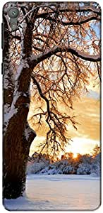 The Racoon Lean printed designer hard back mobile phone case cover for Sony Xperia E5. (Snowy Tree)