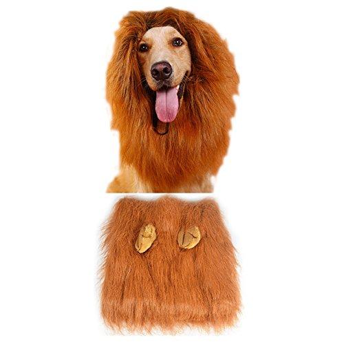 ihrkleid Kostüm für Hunde (Löwe Kostüm Labrador)