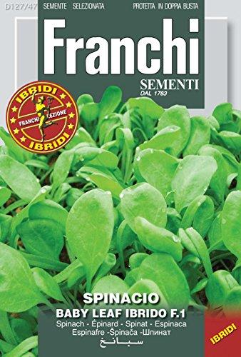 Spinatsamen - Spinat Baby Leaf Ibrido F.1 von Franchi Sementi
