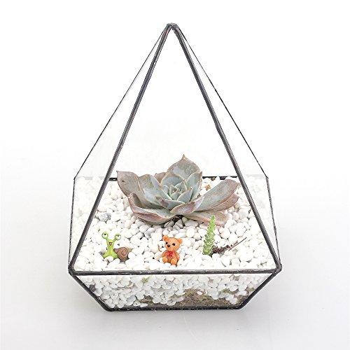 Moderno Vetro polyhedrons da tavolo, per piante grasse terrario Box/Air Piante e cactus geometrico vetro Borraccia Eco Custodia per bonsai - Vintage Ceramica Mold