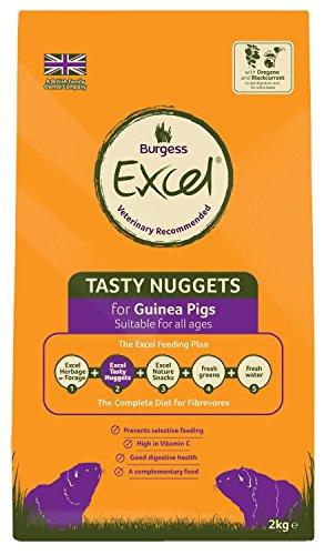 51TnXnB1bXL BEST BUY UK #1Excel Guinea Pig Blackcurrant & Oregano 2kg