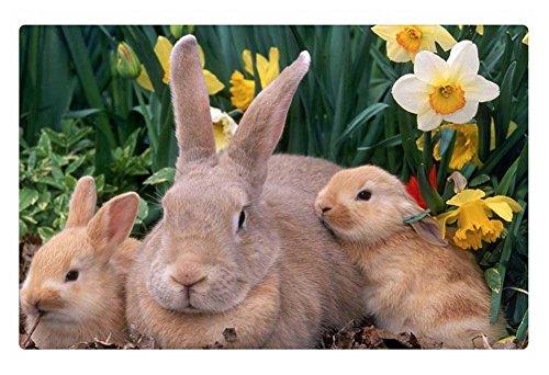 iRocket Fußmatte für Innenbereich, Happy Easter! Maße: 60 x 40 cm