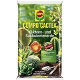 COMPO CACTEA® Kakteen- und Sukkulentenerde, hochwertige Spezialerde für alle Kakteenarten und dickblättrige Pflanzen, 5 L
