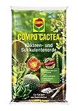 COMPO CACTEA® Kakteen- und Sukkulentenerde, hochwertige Spezialerde für alle Kakteenarten und dickblättrige Pflanzen, 5 L -