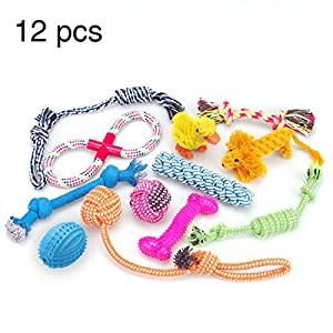 RoyalCare-Dog-Toys-12-Pack-Gift-Set-Ball-Rope-and-Chew-Squeaky-Toys-for-Medium-to-Small-Dog