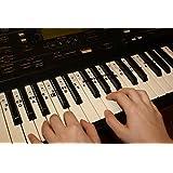 Autocollants de Note de Musique de Piano de clavier Transparent C-D-E-F-G-A-B