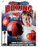 Toyrific Sacco Boxe Bambino - Bag Pro per Bambini con Guantoni [importato da UK]