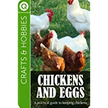 Crafts and Hobbies : Chickens and Eggs (English Edition)