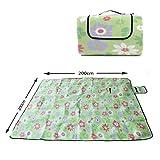 Ocean5 XXL Picknickdecke 200 x 200cm, wärmeisolierende Camping-Decke, wasserdicht und zusammenfaltbar, mit Tragegriff, Farbe: grün - Blumen
