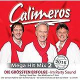 Mega Hit Mix 2 - Die grössten Erfolge im Party Sound