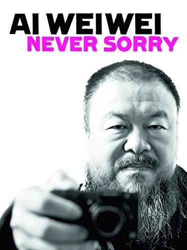 Ai Weiwei - Never Sorry