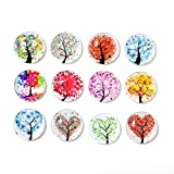 Shengchu 12 Tree Of Life Fridge Magnets - Office Magnets Set,Dry Erase Board Magnets, Refrigerator Magnets For Whiteboard, Map, Home Decoration, Arts & Crafts, Office Organizing (Tree Of Life)
