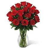 ADAFLOR. Ramo de 25 rosas naturales frescas de ecuador rojas. 60 cm de largo. Variedad Freedom. Máxima calidad en flores. Jarrón no inluido. Envío en 24h garantizado.