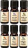 Ätherische Öle Premium EBENTHAL VITAL® • Duft-Öl-Set 100% pur & naturrein • in Deutschland geprüfte Qualität • Aromatherapie-Set mit 6 x 10ml • Eukalyptus Lavendel Minze Orange Fichtennadel Rosmarin