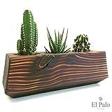 3 Kakteen Kaktus + Topf aus Holz - El Cactus 3.0 - Braun - El Palo Germany