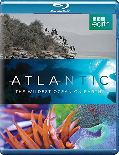 atlantic-the-wildest-ocean-on-earth-blu-ray