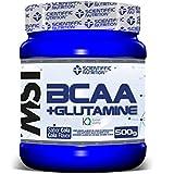 BCAA + Glutamine 500g Sandía: Amazon.es: Salud y cuidado personal