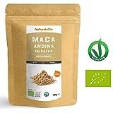Maca Andina en Polvo Gelatinizada - Cultivo Ecológico, 100% Pura, Máxima Calidad (Bolsa de 900gr)