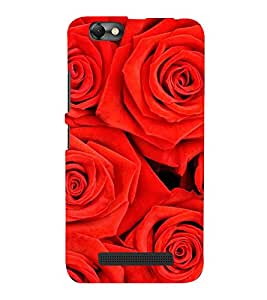 FUSON Beautiful Red Roses Background 3D Hard Polycarbonate Designer Back Case Cover for Lenovo Vibe C :: Lenovo A2020