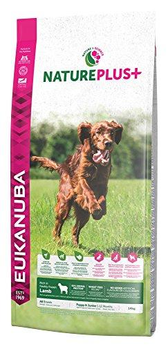 Eukanuba NaturePlus+ weizenfreies Trockenfutter für Welpen und Junghunde, reich an gefrierfrischem Lamm, 1er Pack (1 x 14 kg)