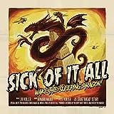 Wake the Sleeping Dragon! (Ltd. CD Box Set)