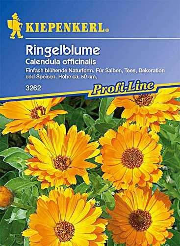 Ringelblumen Heilkraut Calendula officinalis für Tee- und Salbenzubereitung