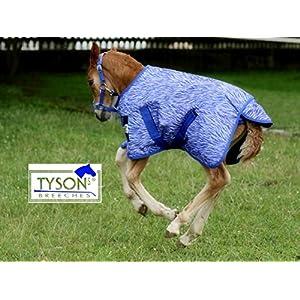 Tysons Breeches 1200 D Fohlendecke 55 65 cm Kaltblut Warmblut Blau o Pink Fohlen Regendecke extra Brustlatz NUR Klett…